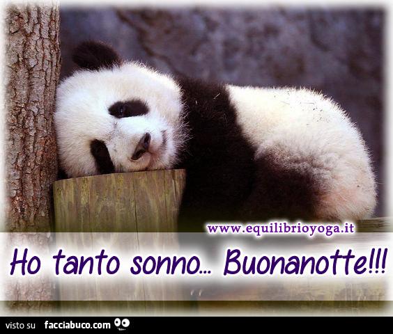 Ho Tanto Sonno Buonanotte Facciabucocom