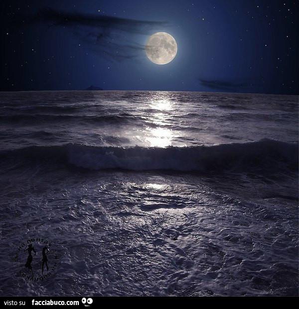 Luna Illumina Un Fantastico Mare Mosso Facciabucocom
